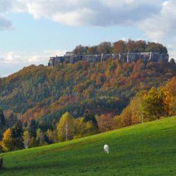 Festung Königstein im Herbst